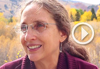 Ruth DeFries on the relationship between peace & environment