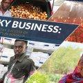 Access to Somali Loans