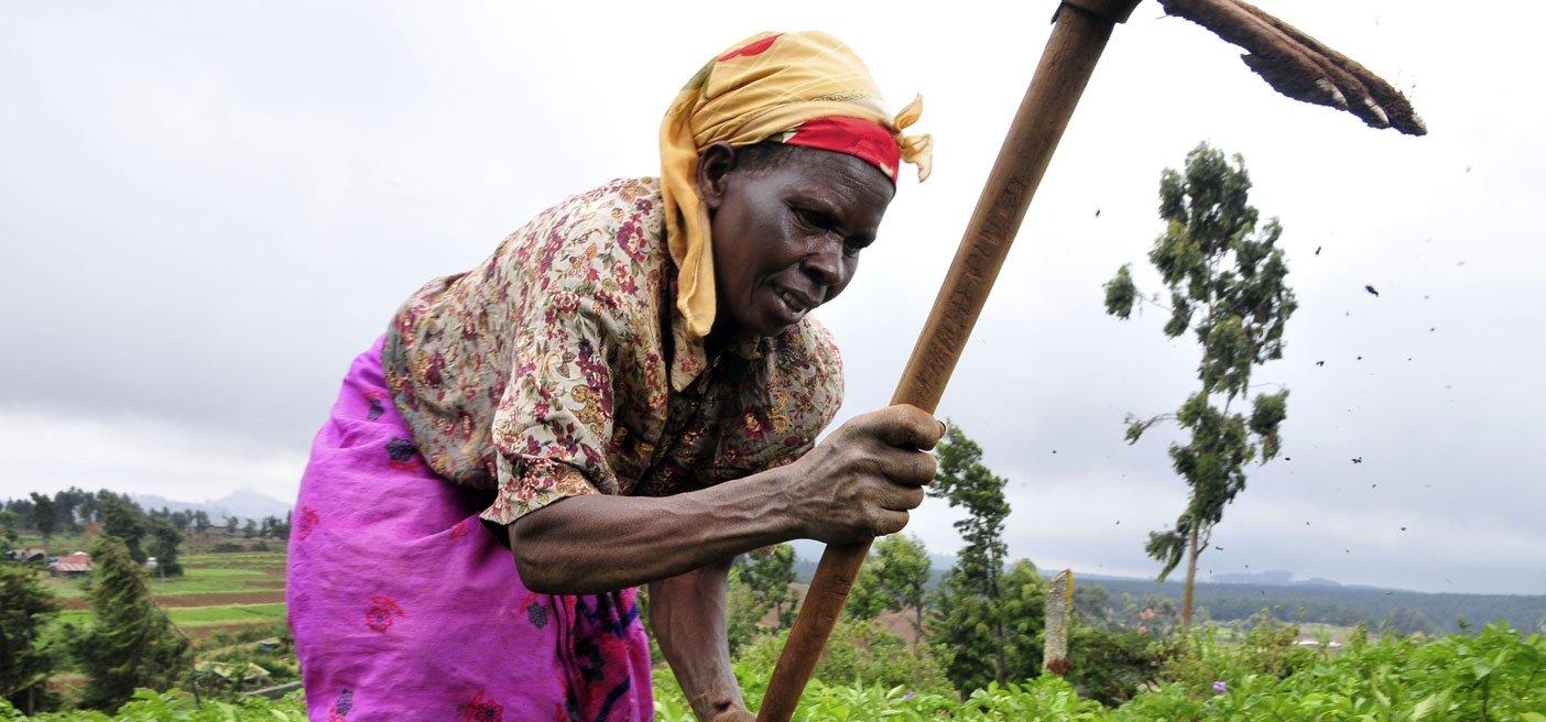 Development Ends Poverty