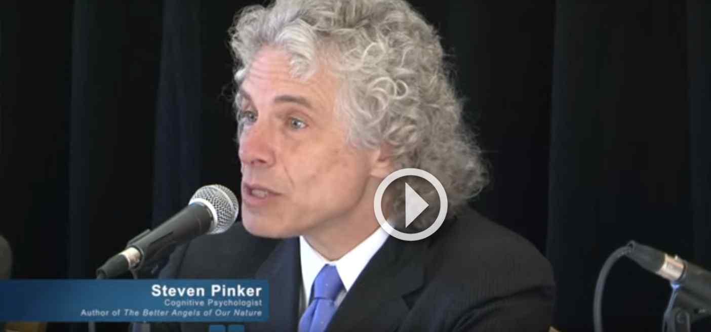 Steven Pinker on World Violence