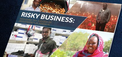 Access to Somali Loans