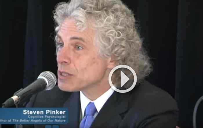 Steven Pinker on World Violence
