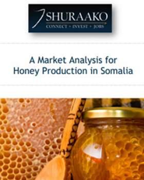 Honey Production Somalia