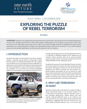 exploring the puzzle rebel terrorism