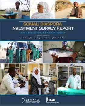 Somali Investment Survey Report